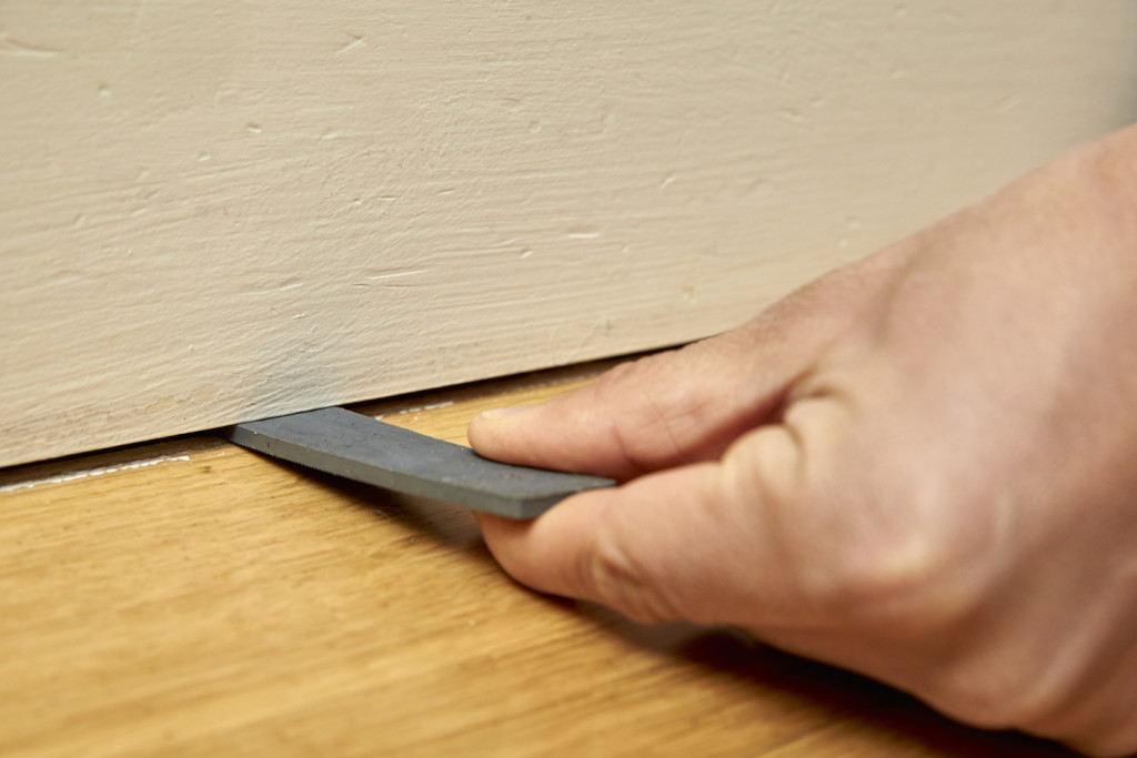 mice control in residential homes