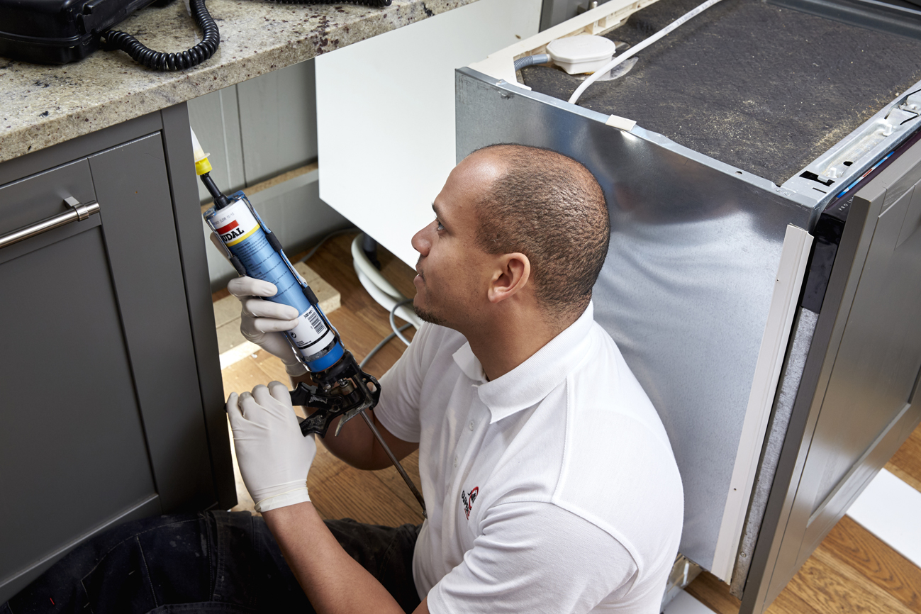 Permanent mouse removal - mouse proofing is the only solution that works